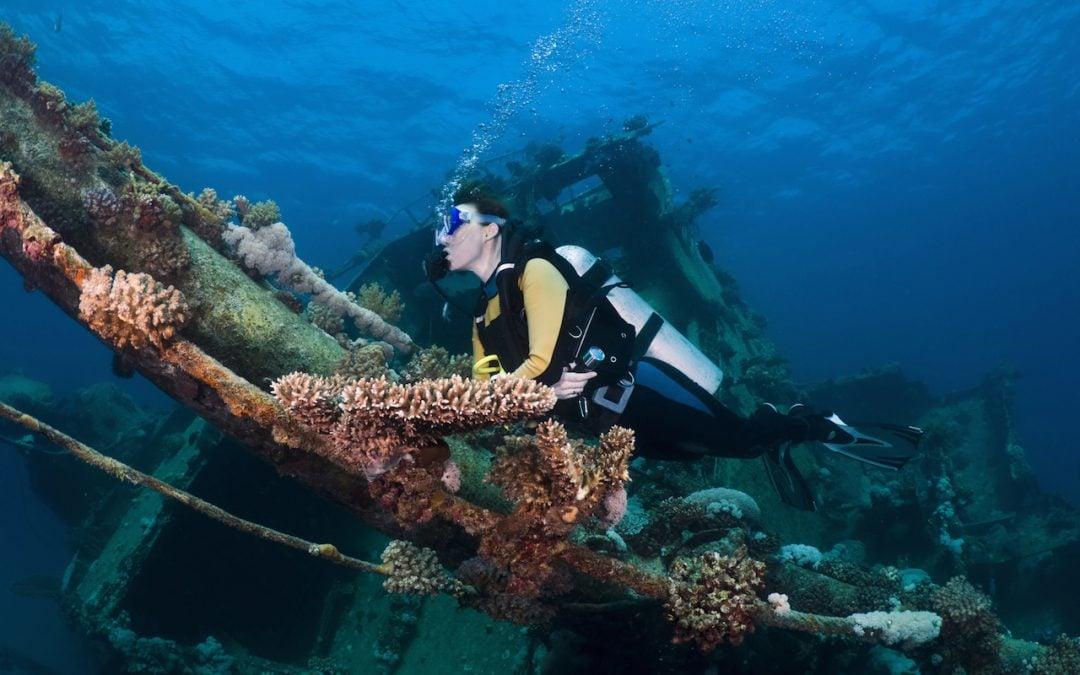 Open Water Diver – Stopień Podstawowy