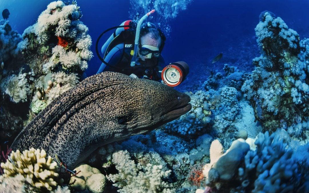 Underwater Navigation – Nawigacja Podwodna