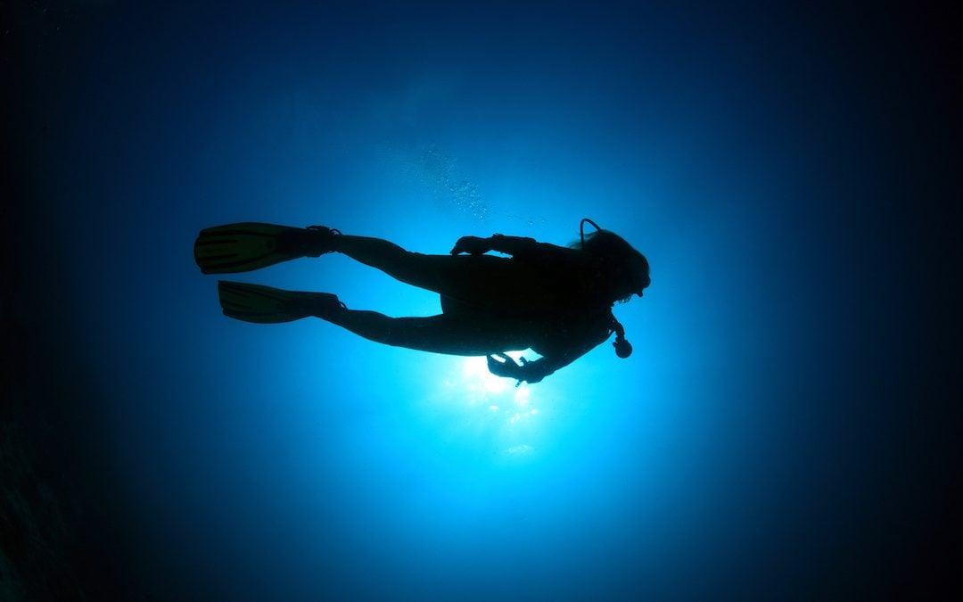 Night Diver – Nurkowanie Nocne